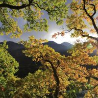 Autumn at Crummock Water, by Ruth